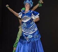 Сукня для танцювального шоу