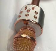 Микрофон беспроводной с динамиком WSTER WS – 858