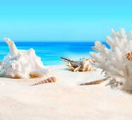Скіналі 3Д Піщаний пляж купити оптом в Україні