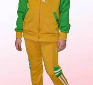 Дитячий спортивний костюм 2253