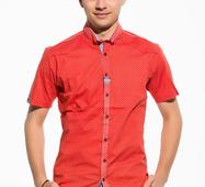 Мужская рубашка короткий рукав Тем коралл принт мелкий