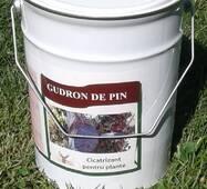 Гудрон ди пин  садовий