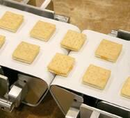 Конвеєрна стрічка ПВХ харчова промислового застосування