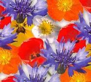 Цветочная бумага 44