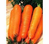 Морква Червоний гігант за 2 г (ЕМР-3)