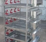 Клітка-підрощувач для перепелів 6 ярусів купити в Кропивницькому