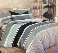 Комплект постільної білизни Сатин 022