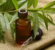 Чайного дерева эфирное масло купить в Украине