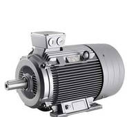 Электродвигатель Siemens 1LA5183-4AA10-Z D22