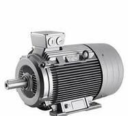 Электродвигатель Siemens 1LA5223-6AA10
