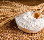 Пшеничне борошно першого сорту, купити в Хмельницькому