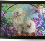 Картина трёхмерная Кошечки с объёмным эффектом 3D