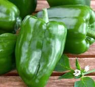 Перець солодкий Зелене чудо ( ЕПР-91) за 0,2г