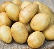 Картопля  Лаперла.