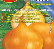 Семена лука Глобус 2 г Инк.