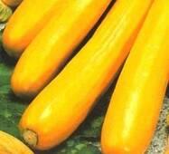 Семена кабачков цукини Золотинка