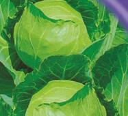 Семена капусты белокачанной Копенгаген маркет 10 г