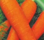 Семена моркови Флакко 20 г