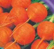 Семена моркови Парижская 500 шт.