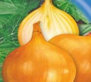 Семена лука репчатого Глобус 200 шт.