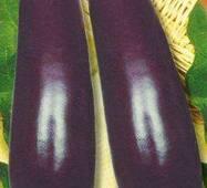 Семена баклажана Поп Лонг (имп)