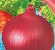 Семена луки репчатого Радуга 200 шт.
