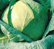 Семена капусты Амагер 611 (Имп)