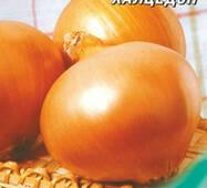 Семена луки Халцедон 10 г