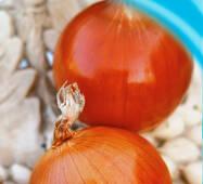 Семена лука репчатого Голд стар 200 шт.