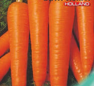Семена моркови Витаминная 6 10 г