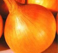 Семена луки Стригуновский