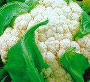 Семена капусты цветной Всесезонная (имп)