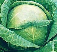 Семена капусты Слава (имп)