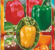 Семена перца Цветные кубики смесь кубовидных перцев 30 шт