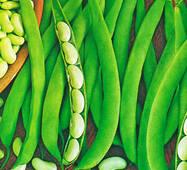 Семена фасоли спаржевой Ксения