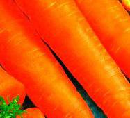 Семена моркови Ланге роте Штумпфе (имп.)