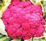 Семена капусты цветной Ди Сицилио Виолетта(Розамунда) (имп)