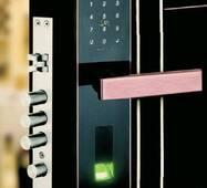 Замок з біометричним доступом для внутрішніх дверей  F11