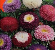 Семена цветов Астра Смесь принцесс, 0.3 гр