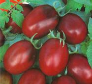 Насіння томату Чорний Мавр 0,1 гр