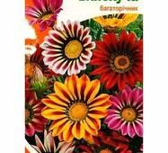 Семена цветов  Газания Блестящая, 0.1 гр