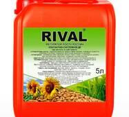 Регулятор роста Ривал (Rival), 5 л