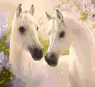 """KHO 2433 """"Пара коней"""" Розпис по номерах на полотні (без коробки) 40х50см"""