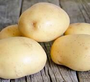Картофель Коннект по 6 кг (ІКР-36-6)