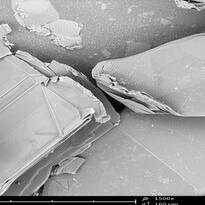 Microphotos