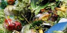 Вплив харчових відходів на здоров'я населення