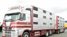 Купівля вантажної техніки з Європи: поради покупцям