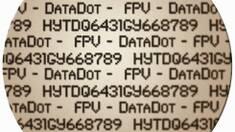 """Вберегти авто допоможе маркування """"DataDot"""""""