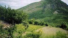 Земля в Крыму сильно дешеветь не будет