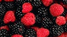 Малина і ожина садова: плоди, калорії та корисні властивості